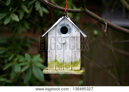 Very old bird house on a branch hanging