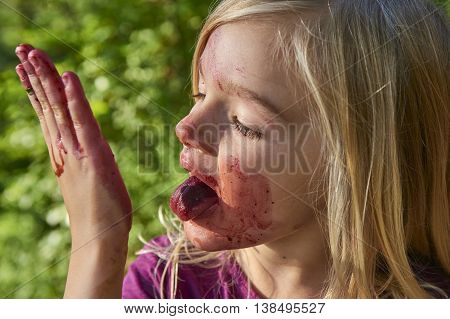 Girl tinged by blueberries. Cute blond little girl picking fresh berries on blueberry field in forest. Child pick blue berry in the woods. Summer family fun.