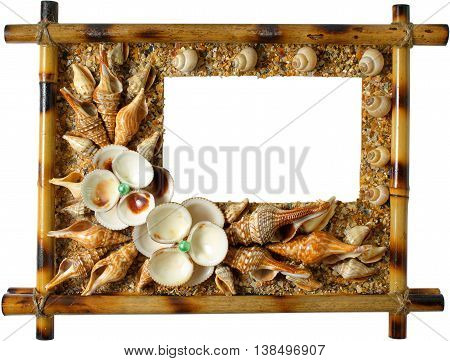 Photoframework from sea cockleshells isolated on white background