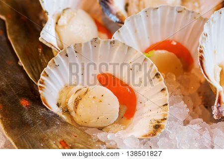 Scallops On A Fish Counter