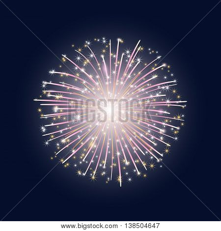 vector illustration. The flash of colorful fireworks with stars on the dark sky background.