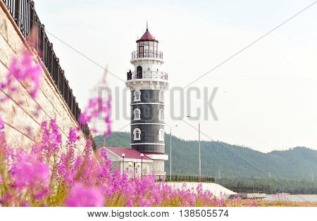 View of lighthouse through the flowers Purple Alpine Cyprus. Lighthouse on the coast of Lake Baikal. Resort Goryachinsk, Siberia. Russia