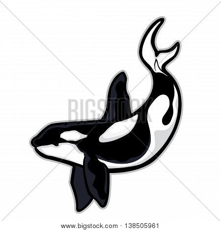 Clipart picture of a killer whale or orca cartoon mascot character