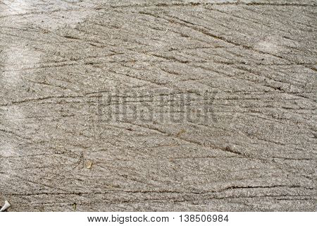 background texture surface cement rough floors gray