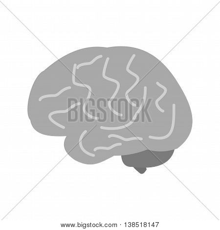 Brain, human, head icon vector image. Can also be used for human anatomy. Suitable for mobile apps, web apps and print media.
