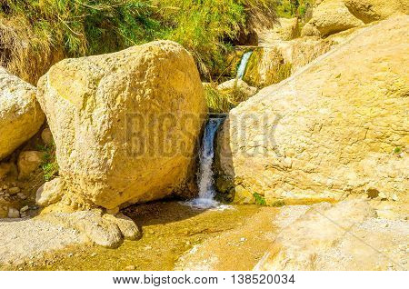 The Ein Gedi Nature Reserve is the famous oasis in Judean desert and popular landmark among tourists Israel.
