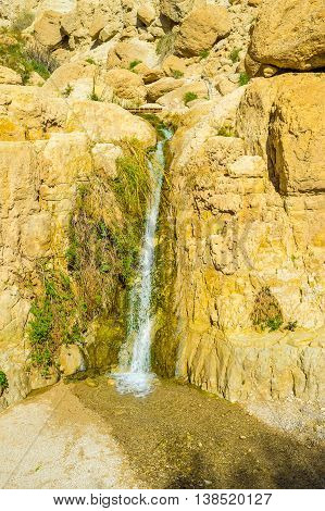 The tiny spring among the dry yellow rocks in Ein Gedi oasis Israel.
