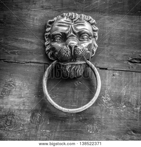Black and white shot of a classic door knocker in the shape of a lion