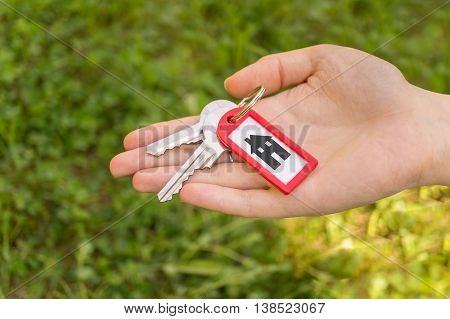 Hand Holding And Passing Keys On Grass Background
