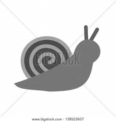 Snail, slow, shell icon vector image. Can also be used for pet shop. Suitable for mobile apps, web apps and print media.