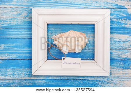 Sea Shell In The Frame With Sign - Sea Adventure