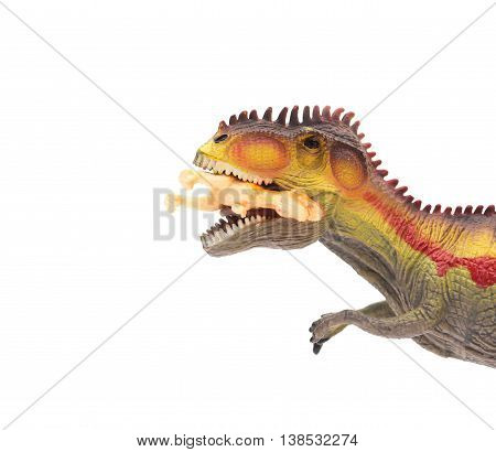 close up on Giganotosaurus catching a small dinosaur toy on white background