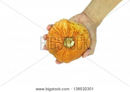 Hand holding small asian yellow pumpkin on white background. Object top view