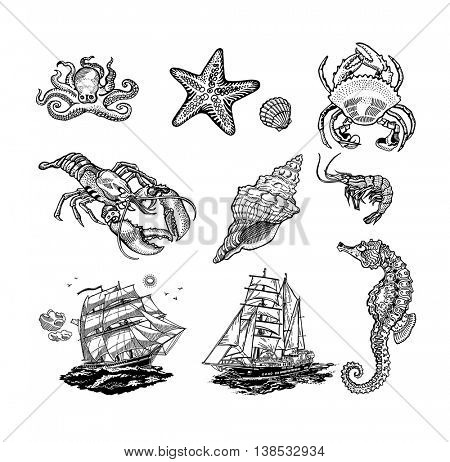 Set of Sea life icons, vector black and white