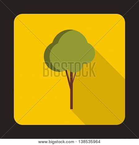 Fluffy tree icon in flat style with long shadow. Plants and nature symbol