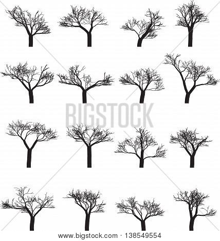 Set of sixteen silhouettes of trees. Vector illustration