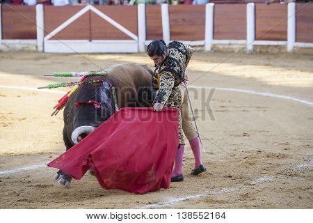 Ubeda Spain - September 29 2010: The Spanish Bullfighter Morante de la Puebla bullfighting with the crutch in the Bullring of Ubeda Spain