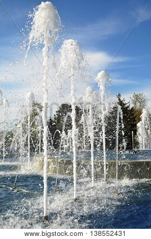 The jets of fountain, spurting high up