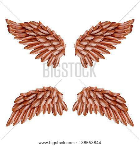 Two pairs of small brown bird wings set isolated on white background realistic vector illustration