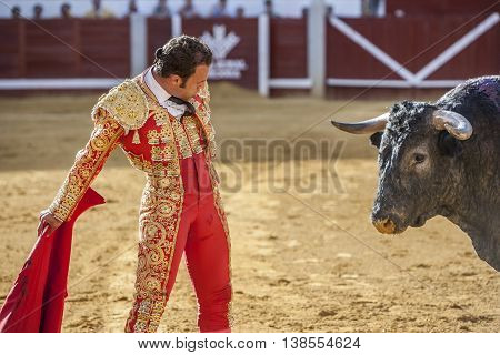 Pozoblanco Spain - September 24 2010: The Spanish Bullfighter Antonio Ferrera bullfighting with the crutch in the Bullring of Pozoblanco Spain