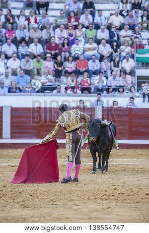 Pozoblanco Spain - September 24 2011: The Spanish Bullfighter El Fundi bullfighting with the crutch in the Bullring of Pozoblanco Spain
