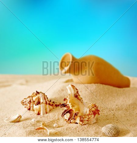 Seashells and amphora in the sand on the beach