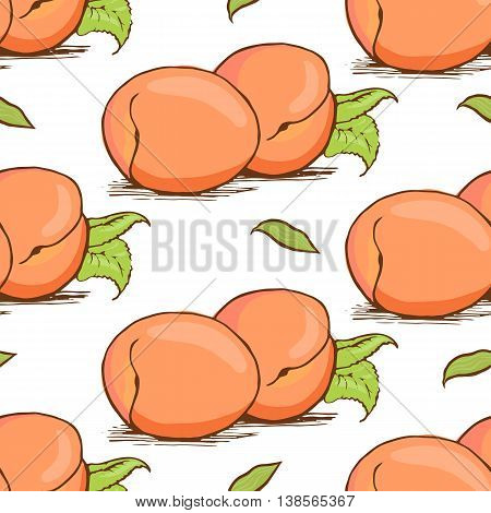 Appetizing apricot sketch style vector seamless pattern on white background. Background of hand drawn fresh ripe apricots for textile backdrop wrap cover web