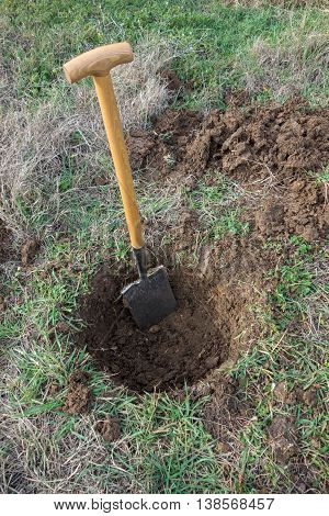Opened hole in the ground for planting tree with shovel