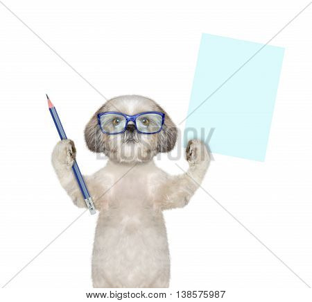 dog in glasses holding a blue pencil and blank -- isolated on white