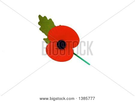 Rememberance Day Poppy. Symbol Of Sorrow