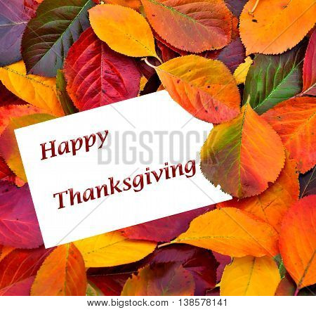 Thanksgiving card with fall leaves background. The card text can be changed to Autumn sale Hello Fall Back to School Thank you or any other