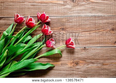 lovey red tulps. Flowers on wooden background. Copy space. Top view.