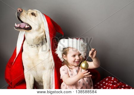 Happy little girl with smiling funny face playing with decoration balls near labrador dog pet in santa claus hat and coat in studio on grey background