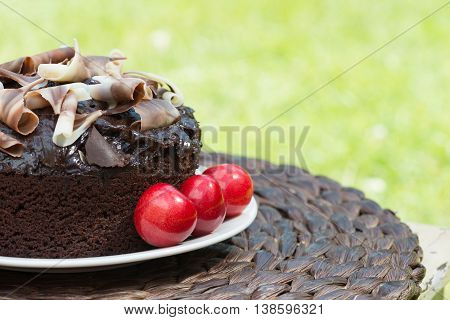 Bright and colorful image of a Whole Rich chocolate cake with chocolate swirls and cream set outside in a garden shot with a shallow depth of field to ad copy space and text. Ideal for garden party invitations and events or cafe menu.