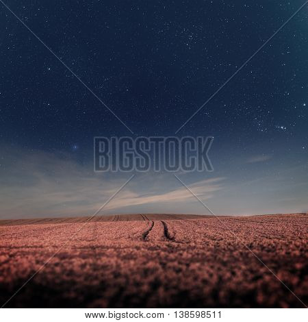 Night sky with stars over the field with traces of the vehicle - focused on stars.