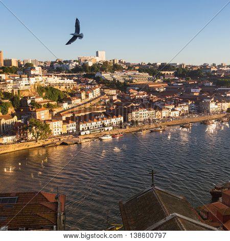 PORTO, PORTUGAL - JUL 9, 2016: View of Douro river and coast of Vila Nova de Gaia. City of Porto won the European Best Destination 2012 and 2014 awards.