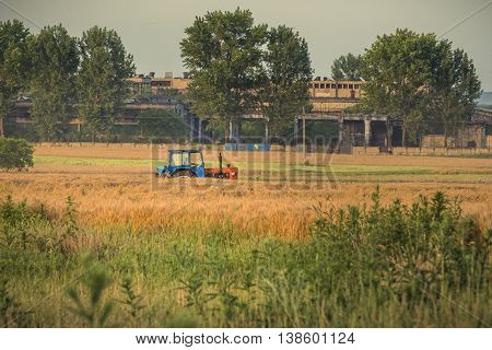 Tractor on a field. Tractor on wheat field.