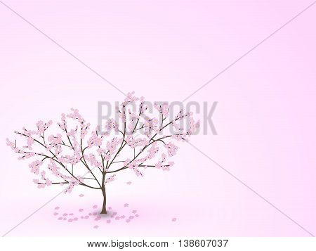 Weeping Cherry Tree With Falling Flowers