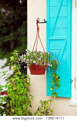 Design elements - pot with flowers on the house wall