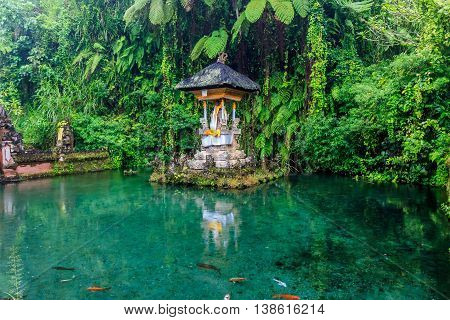 A holy spring at a temple in Bali
