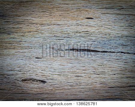 Closeup Rotten Bark Of Papaya Tree