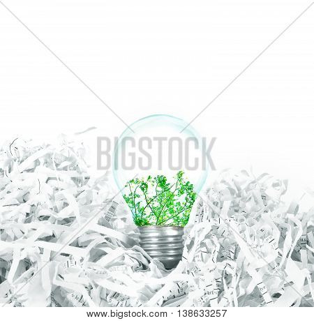 Light bulb with green tree inside place on shredded recycled paper on white background idea innovation and eco concept