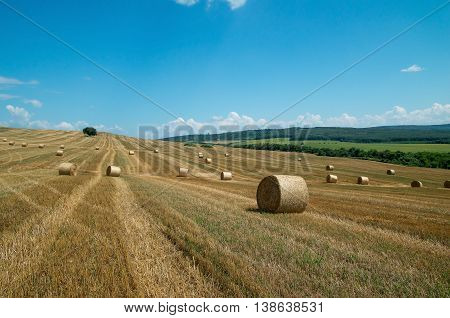 Bales of straw. Levels after the harvest, with bales of straw.