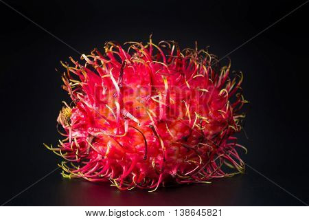 One result of Thailand rambutan fruit on a black background.