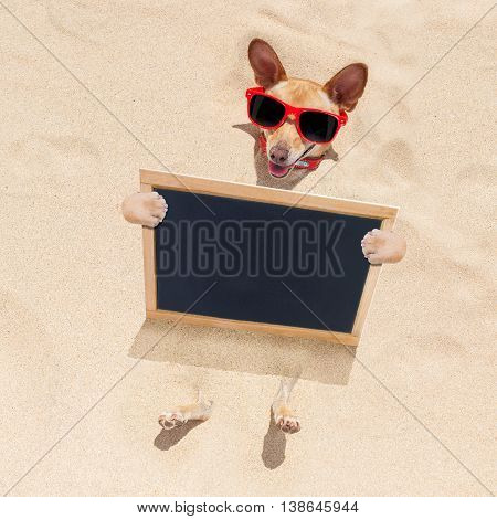 Dog At The Beach And Banner
