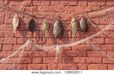 Dried fish, fishing nets and other fishing gear hanging on a brick wall