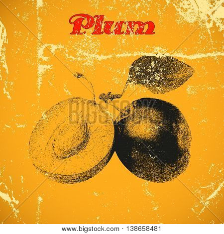 Hand drawn vintage plum isolated on yellow distressed grunge background.