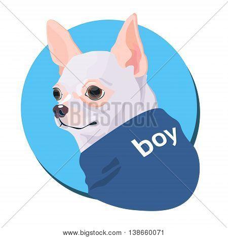 Cartoon Dog Wear Jacket Icon Flat Vector Illustration