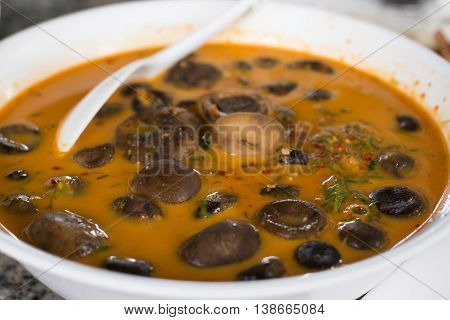 Herbal curry with Barometer Earthstars or call Puffball Mushroom