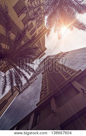 tall office and hotel buildings in the evening sun seen from below, Dubai, UAE